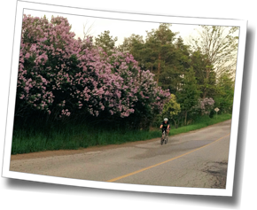 Jen completes repeats at Guelph's Watsonberg hill - DZ Spring Triathlon Training Clinic 2013